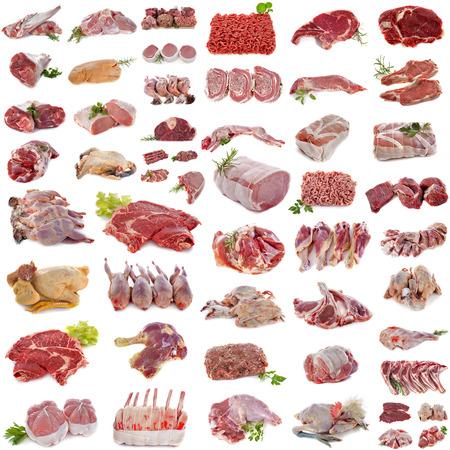 흰색 배경 앞의 고기 그룹