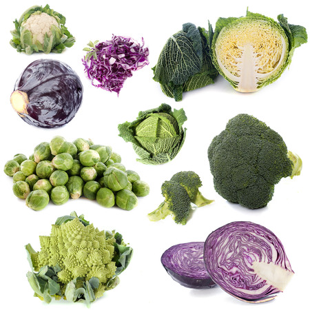 repollo: group of cabbages in front of white background