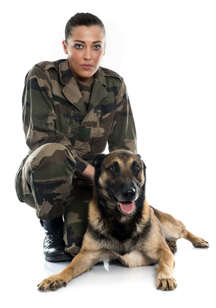 isolated woman: woman soldier and malinois in front of white background Stock Photo