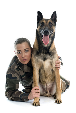 army girl: woman soldier and malinois in front of white background Stock Photo