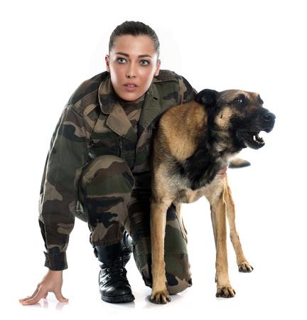 kampfhund: Frau Soldat und Malinois in vor weißem Hintergrund