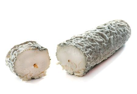 white cheese: goat cheese with ash in front of white background