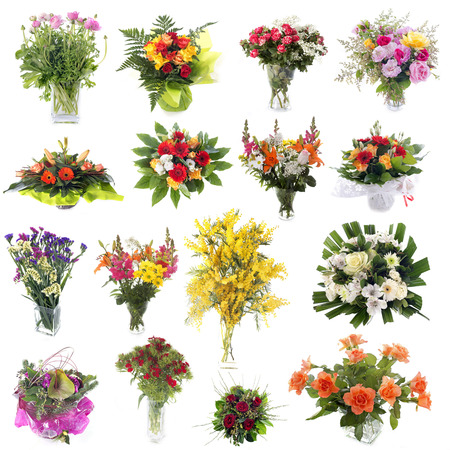 group of cutting flowers in front of white background