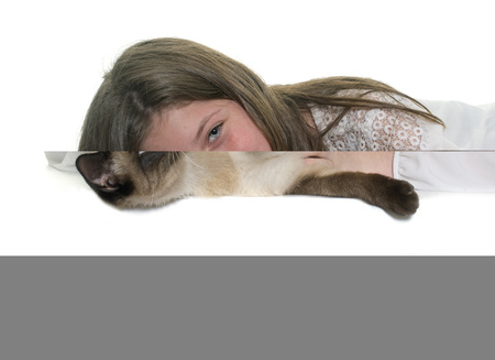 siamese cat: child and siamese cat in front of white background Stock Photo