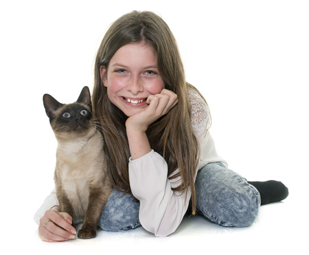 child and siamese cat in front of white background Stock Photo
