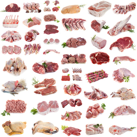 group of meat in front of white background Stockfoto