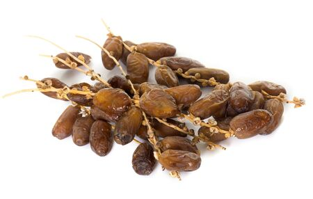 date palm: dried date palm in front of white background