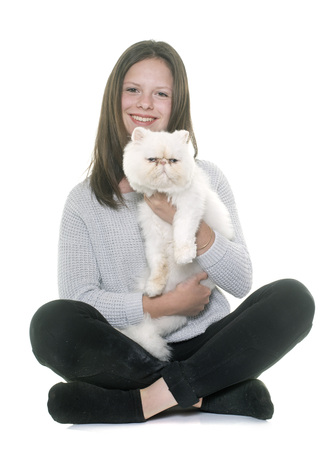 persian cat: white persian cat and teenager in front of white background