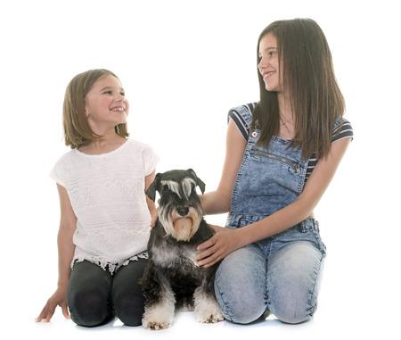 two stroke: children and miniature schnauzer in studio