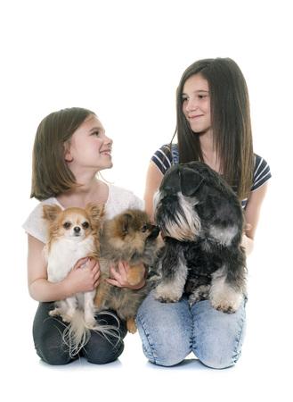 two stroke: children and three dogs in studio