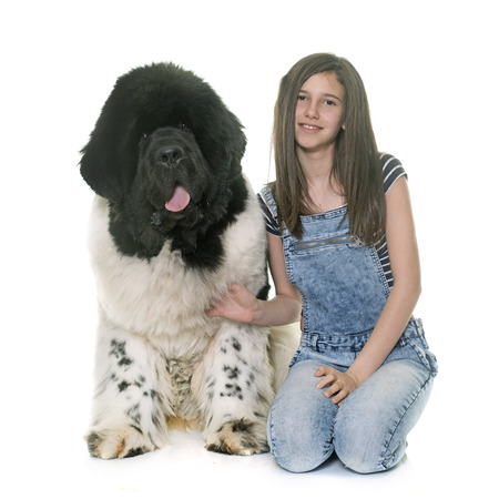 black giant mountain: teenager and newfoundland dog in front of white background