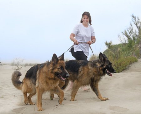 woman walking with her dogs on the beach
