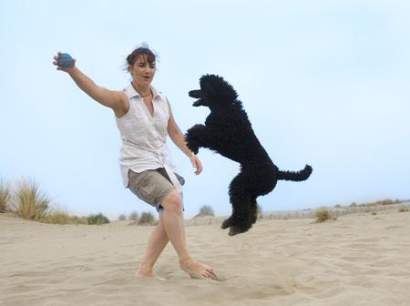 persona saltando: mujer que juega con el caniche en la playa Foto de archivo