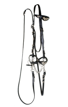 reins: iberian leather bridle in front of white background
