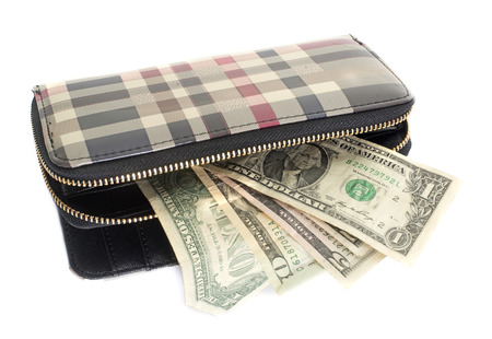billfold: luxury purse in front of white background