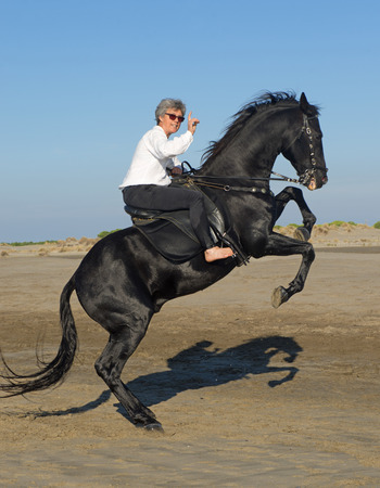 femme a cheval: rearing black horse and woman horse on the beach
