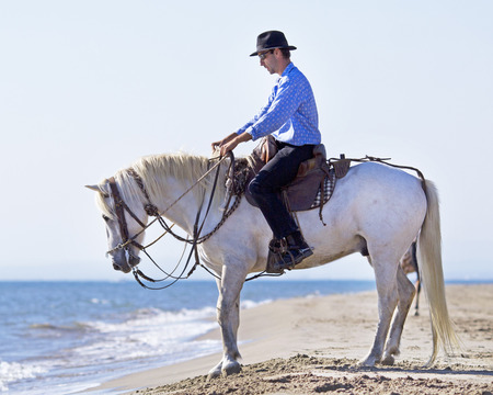 cowboy on horse: herdsman and Camargue walking in the sea