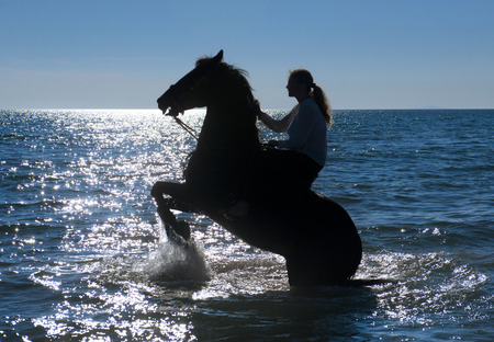 sea horse: horse woman and her stallion riding in the sea