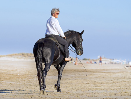 horse andalusian horses: horsewoman and her horse on the beach