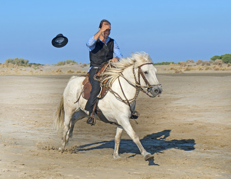 horse woman and her stallion riding on the beach Stock Photo