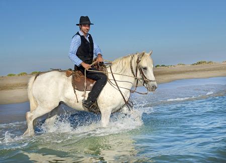 uomo a cavallo: cavaliere e la sua Camargue cavallo nel mare