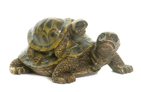 ceramics turtle in front of white background Stock Photo