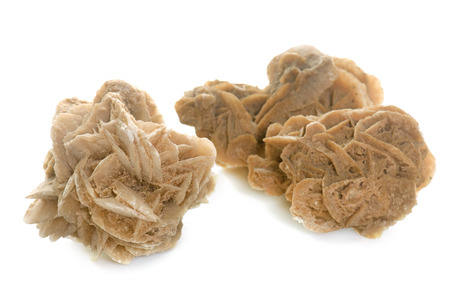 two object: Desert roses in front of white background