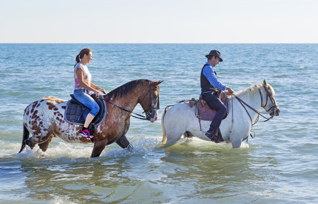 appaloosa: two riders walking with their horses in the sea