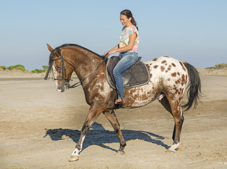 appaloosa: woman and appaloosa horse walking on the beach Stock Photo