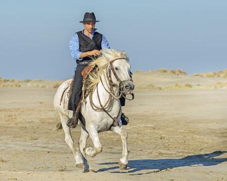 herdsman on the beach whit his Camargue horse Banque d'images