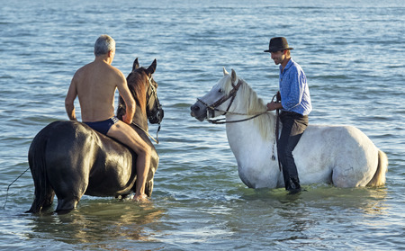 two riders walking with their horses in the sea