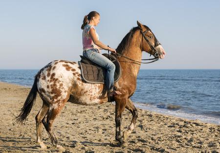 caballo de mar: Mujer y caballo appaloosa caminando en la playa Foto de archivo