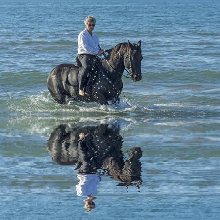 femme a cheval: femme à cheval son étalon noir dans la mer