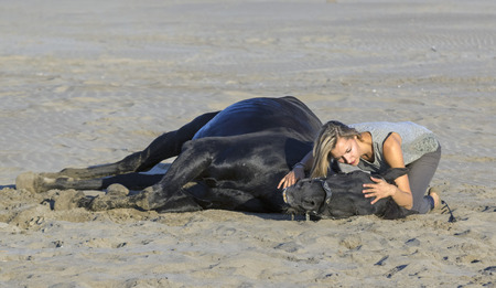 dead animal: horsewoman and her black stallion laid down on the beach Stock Photo