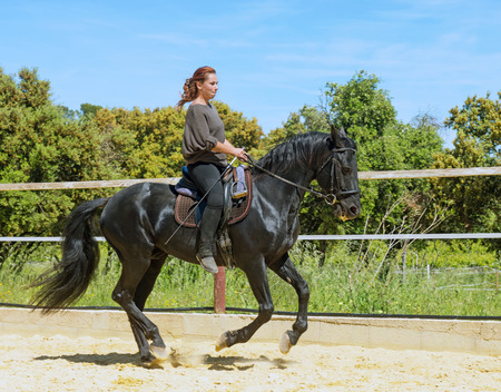 riding woman on a white stallion training in dressage Stock Photo