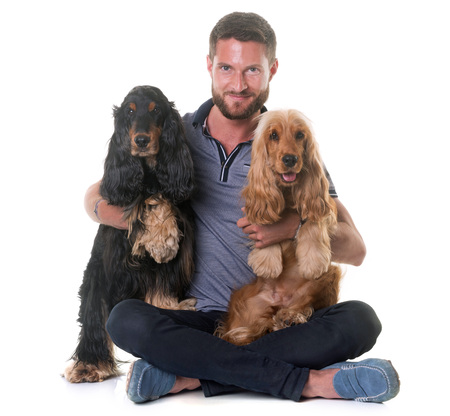 dog isolated: two cocker spaniel and man in front of white background