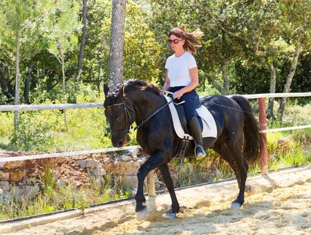 Trianter de dressage pour une fille d'équitation et étalon Banque d'images - 80173475
