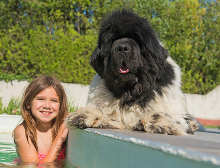 complicity: child and newfoundland dog in a swimming pool