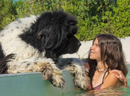 newfoundland: teen and newfoundland dog in a swimming pool