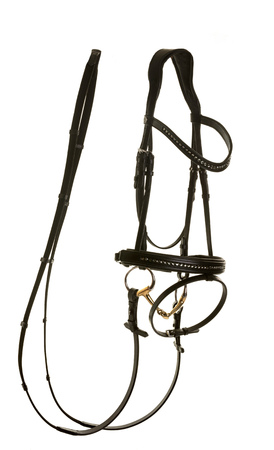 leather bridle in front of white background 版權商用圖片