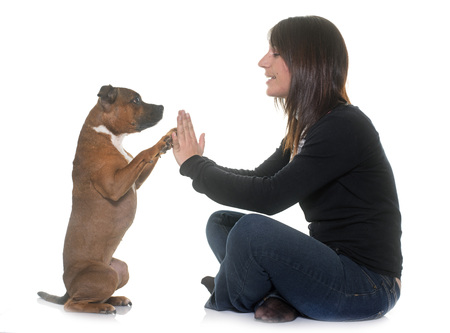 woman and staffordshire bull terrier in front of white background