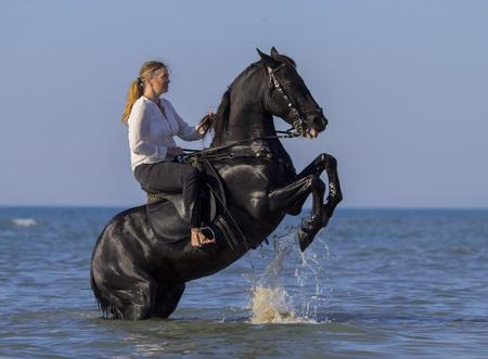 CUyère et son cheval sur la plage Banque d'images - 90388072