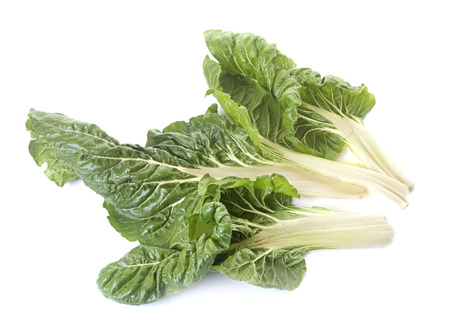 Swiss chard on white background