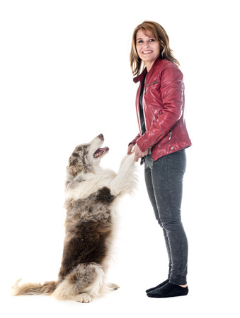 border collie and woman in front of white background