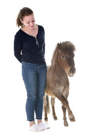 Falabella miniature horse and girl in front of white background Banque d'images