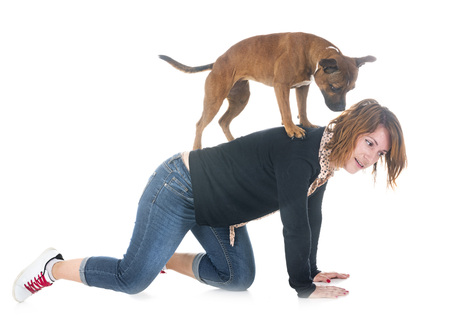 staffordshire bull terrier and woman in front of white background Stock Photo