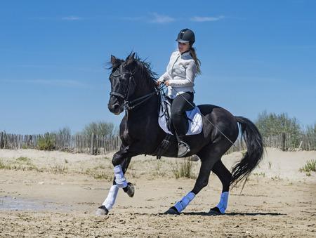riding girl and her stallion on the beach Stok Fotoğraf