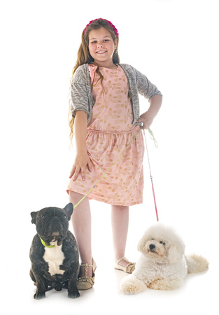 young girl with her little dogs in studio
