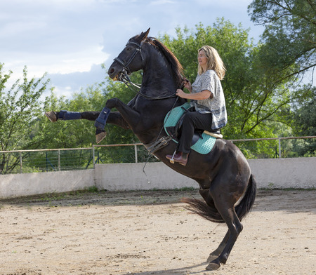 woman rider and her black horse are training