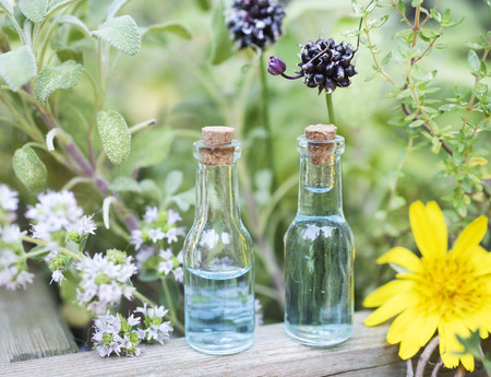 picture of essential oils and plants outdoor